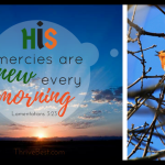 His mercies new in the morning Lamentations 3:23